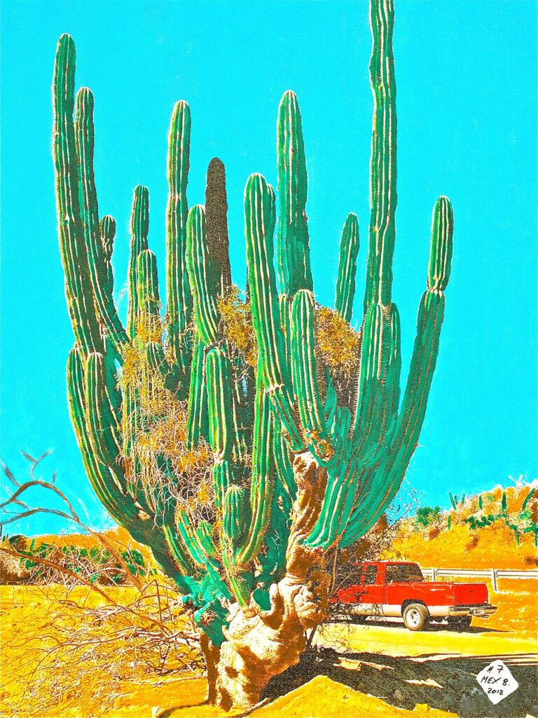 El Cactus - Baja California - Mexico 2005 - Pintado 2012